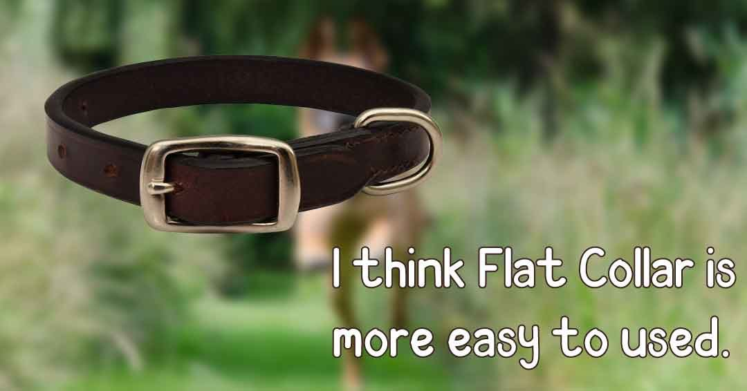 i think flat collar is more easy to used