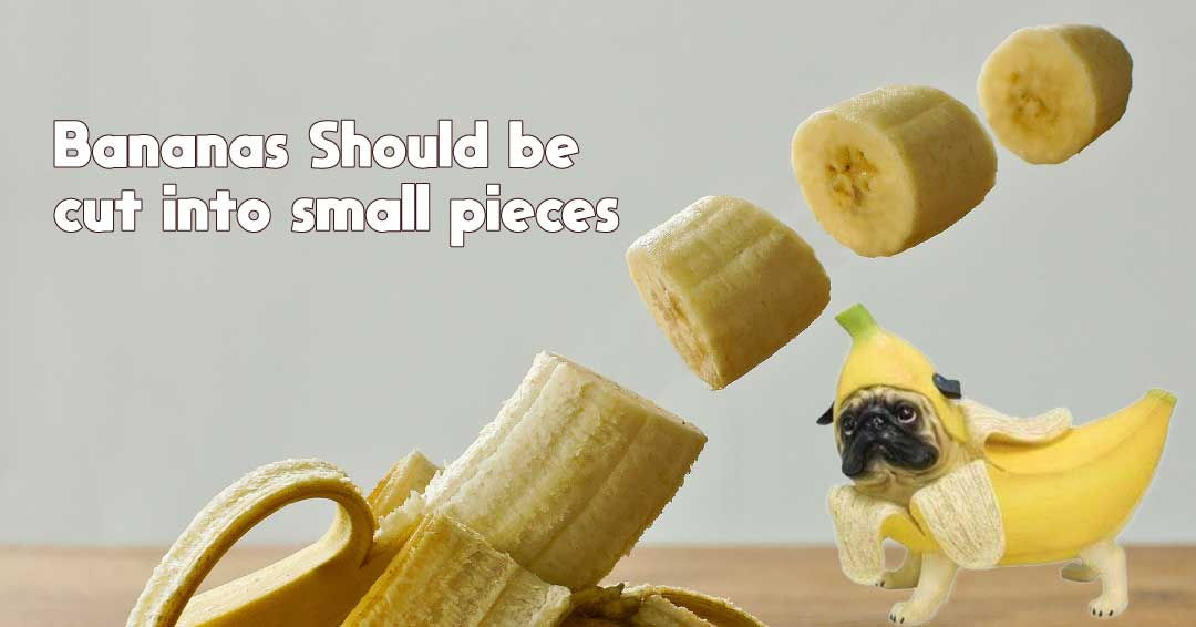 bananas should be cut into small pieces
